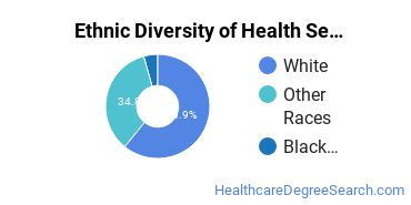 Health Services Administration Majors in ME Ethnic Diversity Statistics