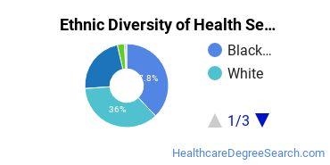 Health Services Administration Majors in VA Ethnic Diversity Statistics