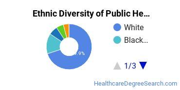 Public Health Majors in KY Ethnic Diversity Statistics