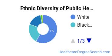 Public Health Majors in ME Ethnic Diversity Statistics