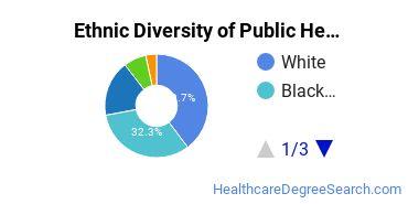 Public Health Majors in MN Ethnic Diversity Statistics