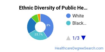 Public Health Majors in NJ Ethnic Diversity Statistics