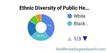 Public Health Majors in NY Ethnic Diversity Statistics