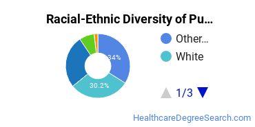 Racial-Ethnic Diversity of Public Health Undergraduate Certificate Students