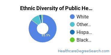 Public Health Majors in VT Ethnic Diversity Statistics