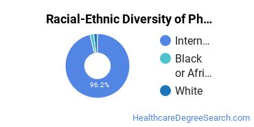 Racial-Ethnic Diversity of Physical Therapy Master's Degree Students