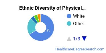 Physical Therapy Majors in VA Ethnic Diversity Statistics